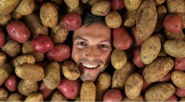 바닷물로 감자를 키운다?