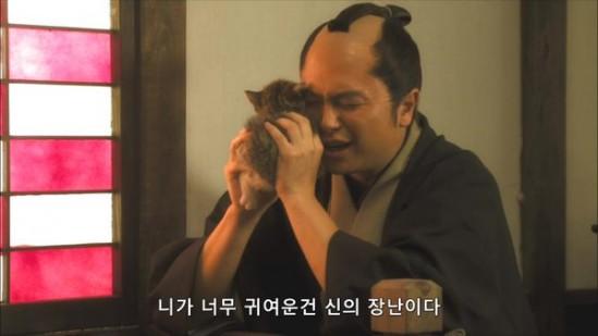 고양이_니가너무귀여운건_신의장난이다