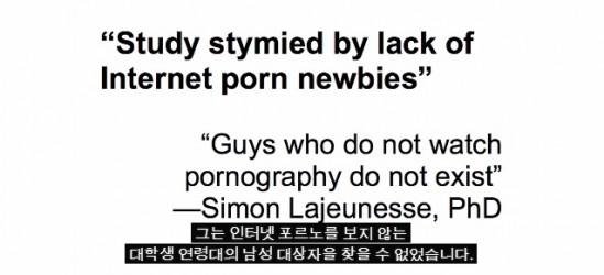포르노영향연구2