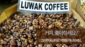 커피를 좋아한다면, 추천하는 동남아 여행지 BEST 7