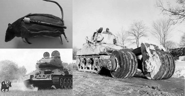 시대를 앞섰거나 황당했거나: 2차대전의 희한한 무기들
