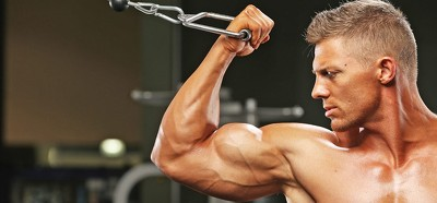 reasons-why-your-biceps-arent-growing-despite-working-out-980x457-1446039149_980x457
