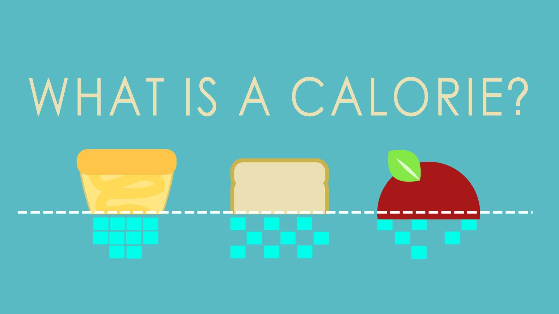 칼로리는 과연 신뢰할 만한 지표일까요?