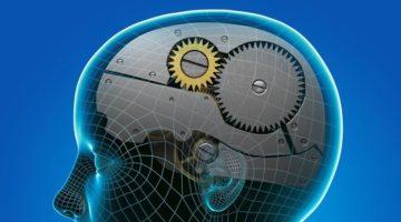 인공지능은 인류 절반의 직업을 없앨 것입니다