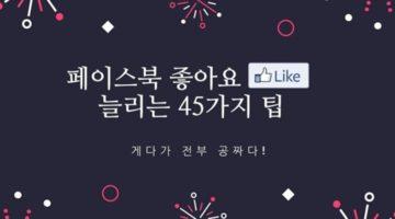 페이스북 '좋아요'를 공짜로 늘리는 45가지 팁