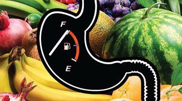 요요현상 없는 진짜 다이어트: 칼로리 조절이 아닌 포만감 조절이다