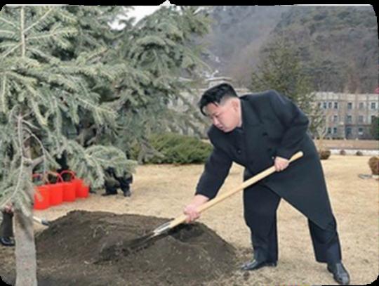 김정은_삽질
