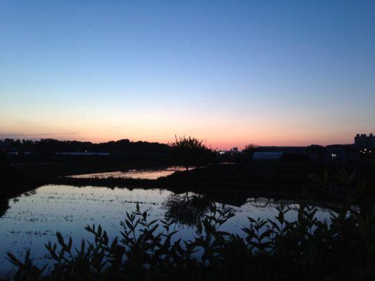 퇴근 길 저녁노을, 난 항상 내가 있는 곳의 소박한 아름다움을 찾아내려 애쓴다. 사진:권대원