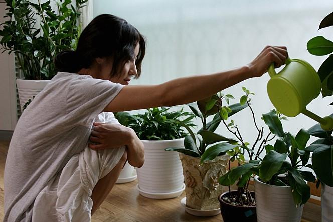 2010년 개봉한 영화 의 한 장면.