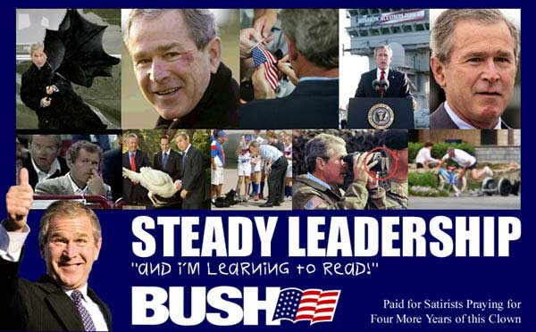 bush_steady