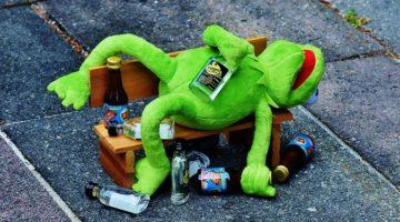 똑똑한 사람이 술을 더 많이 마신다?