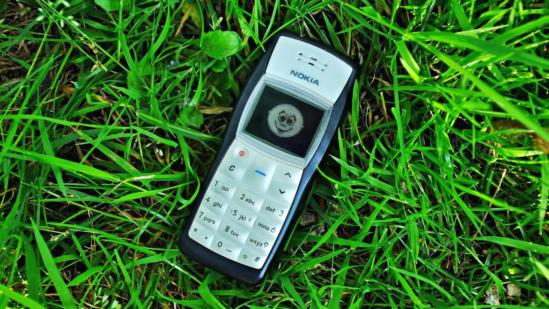 Nokia 1100의 모습