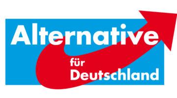 '독일을 위한 대안' 약진에 대한 10가지 질문