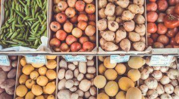 혁신적인 신기술로 발전하는 식품 산업에 대해