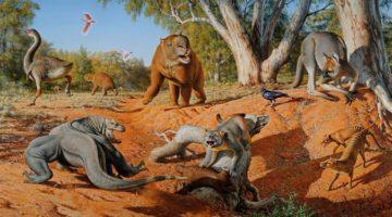 인간이 호주의 거대 동물을 멸종시켰다?
