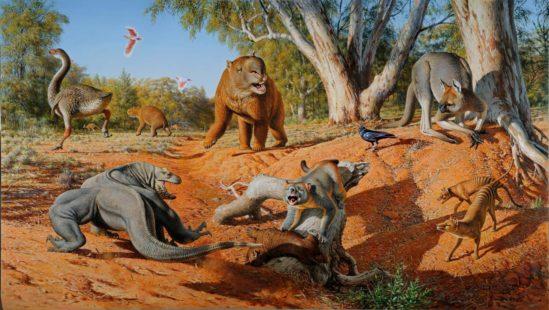 A menagerie of megafauna that inhabited Australia some 45,000 years ago. Credit: Peter Trusler, Monash University