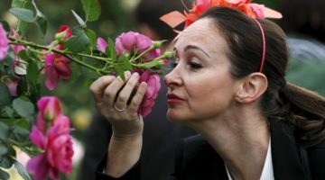 왜 대부분의 언어에는 냄새를 묘사하는 단어가 거의 없을까요?