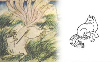 흰 여우, 구미호는 언제부터 한국 괴물이 됐나?