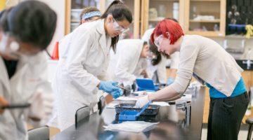 과학기술 발전을 위한 포닥 연구 그룹의 필요성
