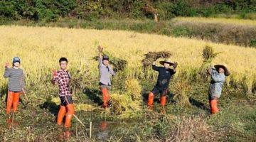 '세월호 팔찌' · '농사펀드' 이웃을 위한 십시일반