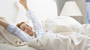 아침형 인간의 신화