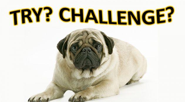 try와 challenge 차이점