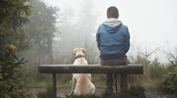 '당신은 개를 키우면 안 된다', 사람도 마찬가지다