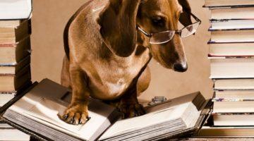 책을 자주 읽는 사람이라면 반드시 부딪히는 고민들