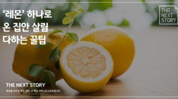 '레몬' 하나로 온 집안 살림 다하는 꿀팁
