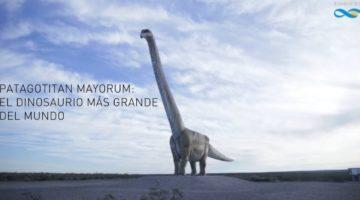 남미의 거대 공룡 파타고티탄 마요룸