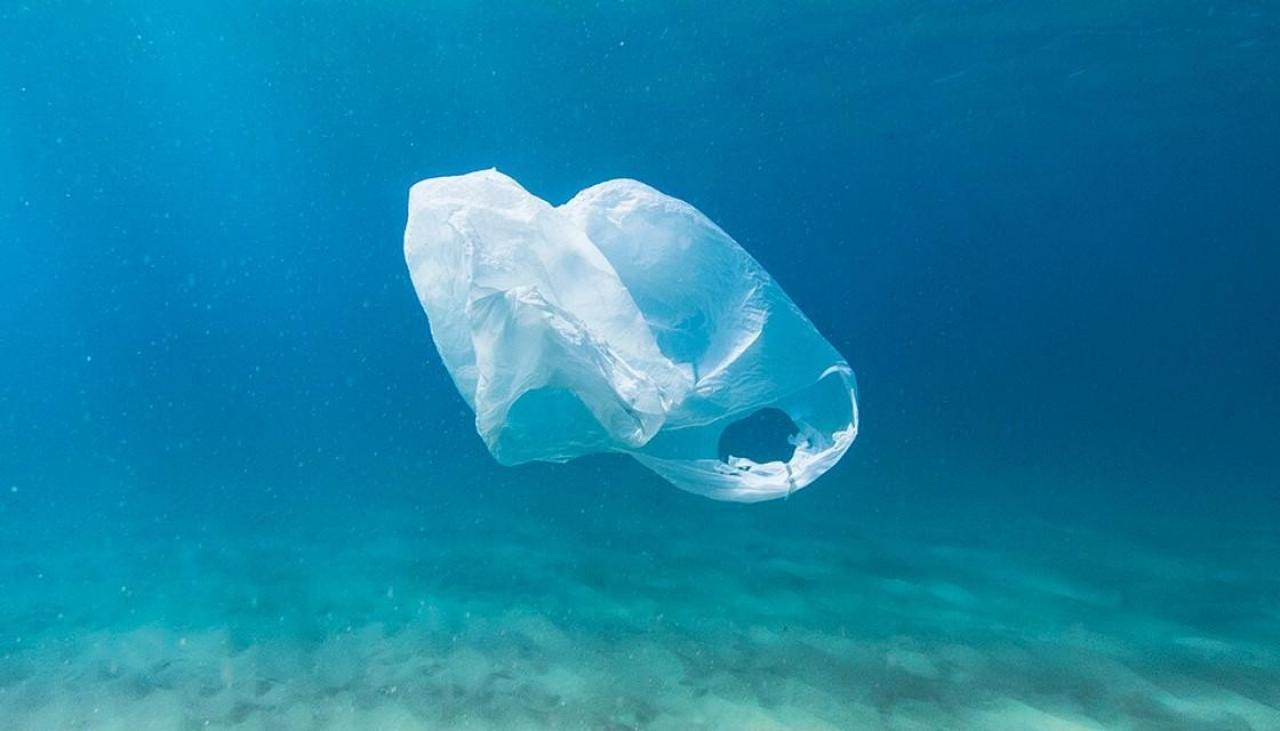 1개의 플라스틱 봉투, 175만 개의 미세 플라스틱이 된다