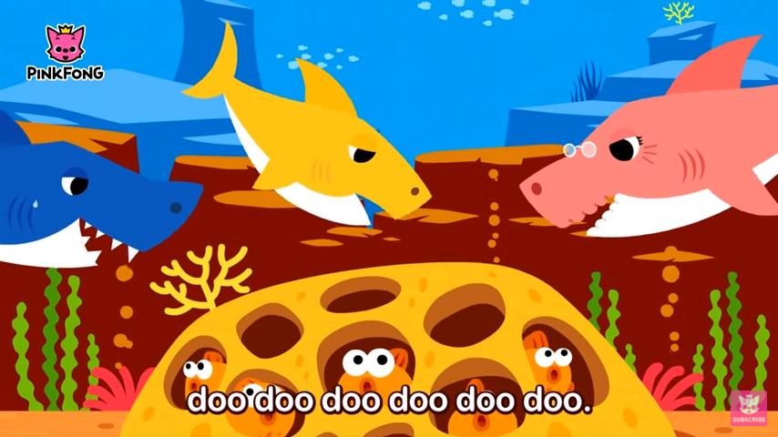 상어 남획이 산호초 어류의 진화를 촉진한다