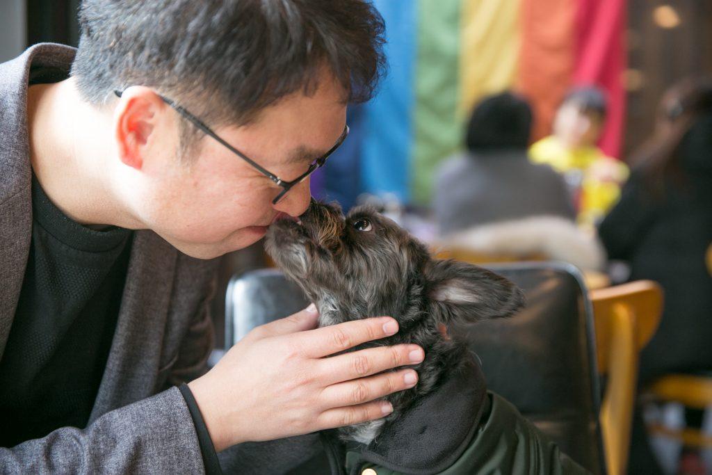 최고급 반려동물 수제 간식을 만드는 예비 사회적 기업 '동물의 집'