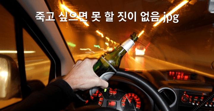 전 세계의 음주운전 처벌에 대해 알아보자