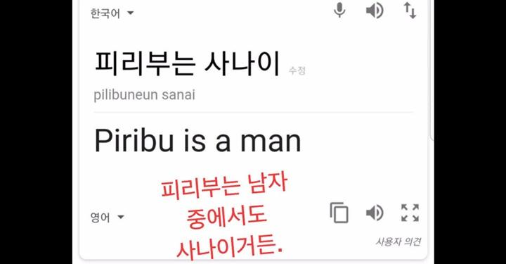기계 번역 전격 비교! 구글 번역 vs. 네이버 파파고