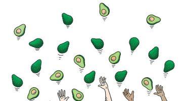 아보카도는 어떻게 세계 과일 무역의 총아가 되었을까?