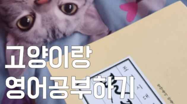조선시대 영어교재로 고양이랑 영어 공부하기!