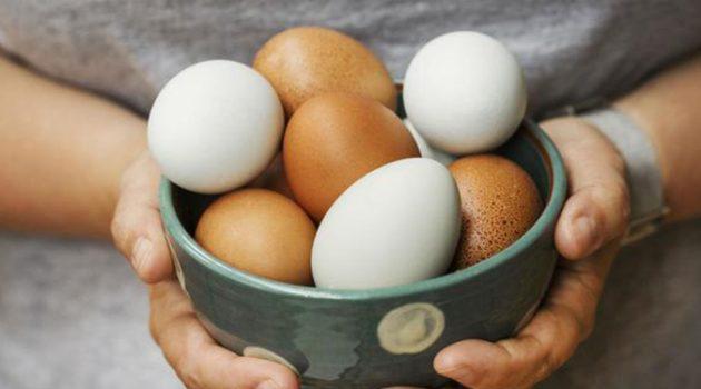 매일 달걀 먹으면 오히려 심혈관 질환 위험도 낮아진다?
