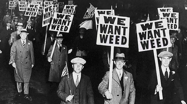 타임라인으로 보는 미국 대마초의 역사