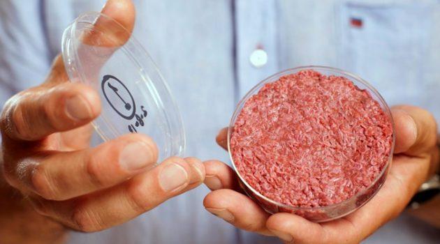 고기의 미래, 사육이 아니라 세포 농업