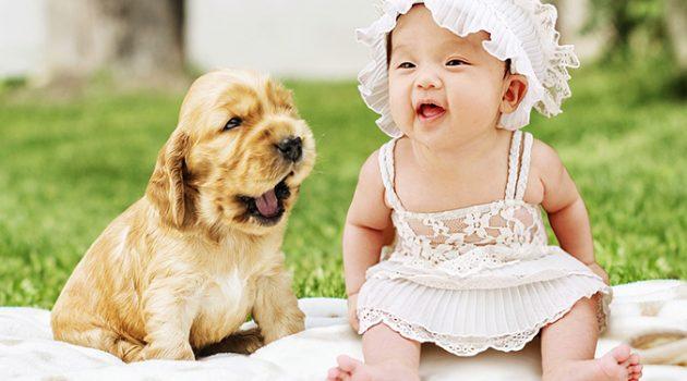 어린 시절 반려동물이 오히려 알레르기 질환을 예방한다