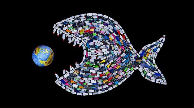고래도, 돌고래도, 물개도 모두 미세 플라스틱이 발견되었습니다