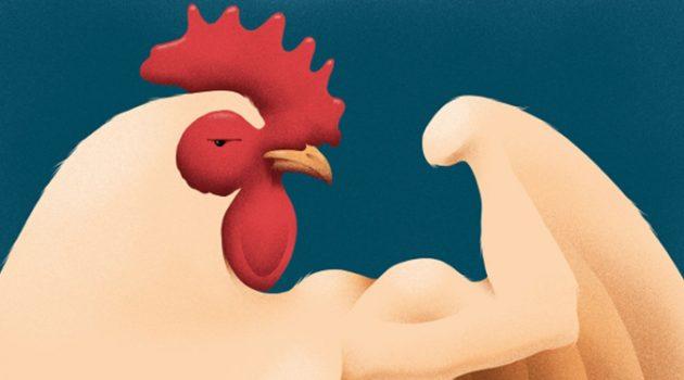 치킨은 어떻게 세계에서 가장 인기 있는 고기가 되었을까?
