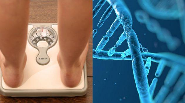 마른 사람은 유전자부터 다르다?