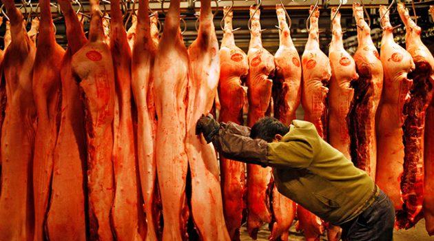 전 세계 육류 소비량 증가, 이제 모두가 고기를 먹는다