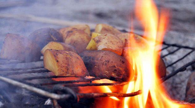 인류가 불을 이용해서 녹말을 요리한 것은 적어도 12만 년 이전