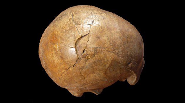 3만 3,000년 전 선사시대 살인사건의 증거
