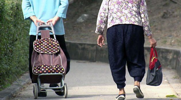 인구 고령화와 성장의 경제학: 일본의 시행착오에서 배우기