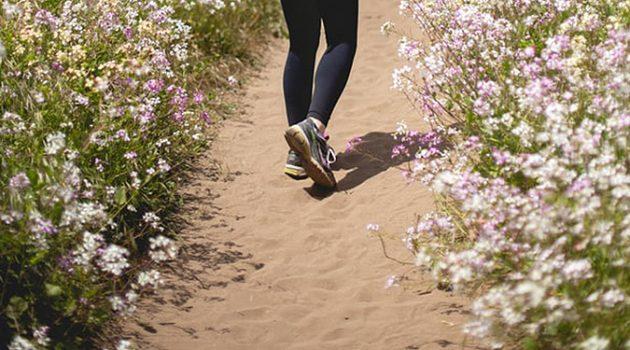 매일 10km씩 걸으면 살 빠져요?