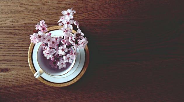떨어지는 벚꽃 잎을 잡으면: 낭만이 사치인 시대, 저는 사치스럽게 살겠어요